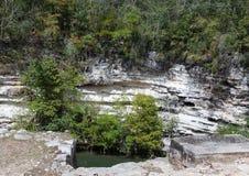 mexico Sakral cenote på Chichen Itza Fotografering för Bildbyråer