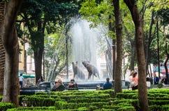 Mexico - stad, Mexico - Oktober 26, 2018 Prärievargspringbrunnen, emblem av coyoacan i Coyoacan parkerar royaltyfri fotografi
