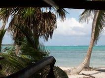 Mexico - strand met palmen stock afbeeldingen