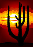 Mexico sunset - vector Royalty Free Stock Photography