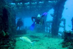Scuba diving through a wreck. In Mexico there are a number of good scuba diving sites royalty free stock photo