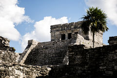 Mexico yucatan Tulum maya ruins 4 Stock Images