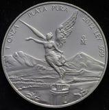 Mexikaner Libertad Silver Coin 1 Unze Lizenzfreie Stockfotografie