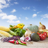 Mexikanische Lebensmittelinhaltsstoffe Stockbild
