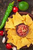 Mexikanische Nachochips und Salsabad Lizenzfreie Stockfotos
