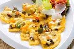 Mexikanische Nachos mit Käse Stockfotos