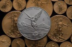 Mexikanische silberne Libertad Coin über Tönen des amerikanischen Goldes Eagles Lizenzfreies Stockbild