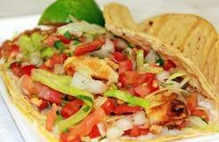 Mexikanische Veggie-Mahlzeit Lizenzfreie Stockfotografie