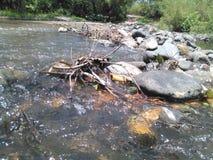 Mexikanischer Fluss Lizenzfreie Stockfotos