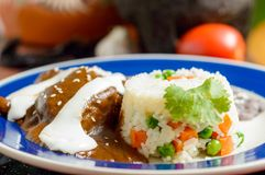 Mexikanischer Moleteller mit Reis lizenzfreies stockbild