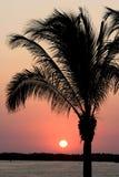 Mexikanischer Sonnenuntergang Lizenzfreie Stockfotos