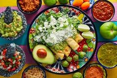 Mexikanisches Lebensmittel der grünen Enchiladas mit Guacamolen Lizenzfreie Stockfotos
