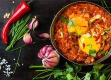 Mexikanisches Lebensmittel - huevos rancheros Eier pochiert in der Tomatensauce Lizenzfreies Stockfoto