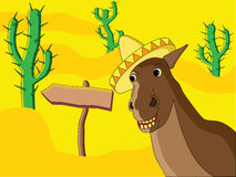 Mexikanisches Pferd Lizenzfreies Stockfoto
