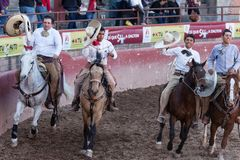 Mexikanisches Rodeo in San Luis Potosi Mexiko lizenzfreie stockfotos