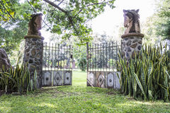 mexikansk plantage Arkivfoto
