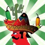 mexikansk sombrero Royaltyfria Bilder