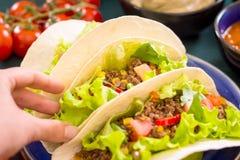 mexikansk tacos royaltyfri bild