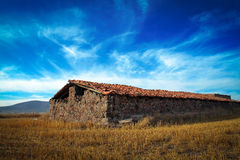 Mexiko-Ackerland mit blauem Himmel Stockfotos