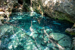 Mexiko-cenotes Yucatan Lizenzfreie Stockfotografie