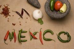 Mexiko, Chile y molcajete Lizenzfreie Stockbilder