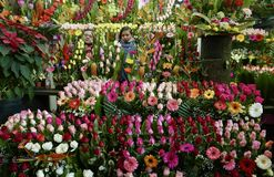 Mexiko City, Mexiko 11. Dezember 2017: Das Blumen-Markt Mercado De Jamaika in Mexiko City Stockbilder