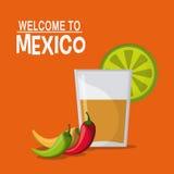Mexiko-Kulturikonen in der flachen Designart, Vektorillustration Stockfotos