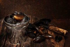 Mexilhões cozinhados Comensal gourmet Imagem de Stock Royalty Free