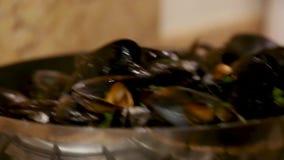 Mexilhões cozinhados em uma bandeja video estoque