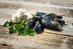 Mexilhões crus alho e salsa na tabela de madeira velha Imagem de Stock