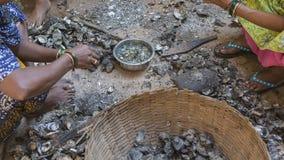 Mexilhões da limpeza das mulheres indianas após a pesca A vida de um peixe Imagem de Stock Royalty Free