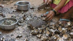 Mexilhões da limpeza das mulheres indianas após a pesca A vida de um peixe Foto de Stock