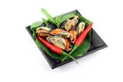 Mexilhões e paprika vermelha no prato preto. Foto de Stock Royalty Free
