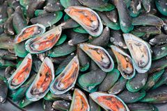 Mexilhões frescos no alimento da rua, chonburi, Tailândia imagem de stock royalty free