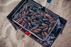 Mexilhões grelhados na grelha Assado do marisco fora Alimento saudável do piquenique, mexilhões nos shell Atividades do verão fotografia de stock