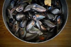 Mexilhões marinhos fritados em uma bandeja Foto de Stock Royalty Free