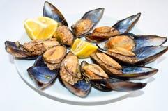Mexilh?es enchidos em um prato branco, dolma do midye Culin?ria turca snack foto de stock royalty free