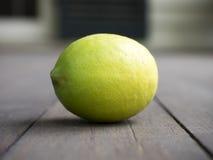 Meyer Lemon Royaltyfri Fotografi