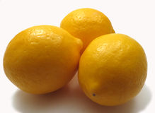 Meyer lemons. Three Meyer lemons on white background Stock Image