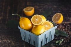 Meyers Lemons Stock Photo