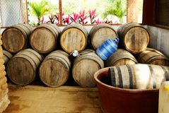 Mezcal Barrels. Waiting to be filled Royalty Free Stock Photo