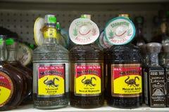 Mezcal i Tequila butelki Fotografia Stock