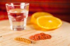 Mezcal napoju dżdżownicy meksykańska sól z pomarańcze plasterkami w Oaxaca Mexico Zdjęcie Royalty Free