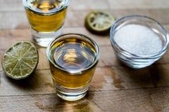 Mezcal Tequilaskott med limefrukt och saltar royaltyfria foton