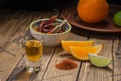 Mezcal tiró con las rebanadas y la sal anaranjadas del gusano Bebida mexicana Fotografía de archivo