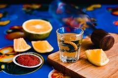 Mezcal tir? con la sal y el gusano del agavo, bebida mexicana del chile en M?xico imágenes de archivo libres de regalías