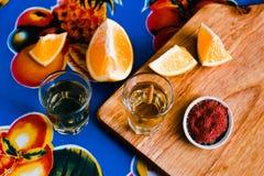 Mezcal tir? con la sal y el gusano del agavo, bebida mexicana del chile en M?xico fotos de archivo libres de regalías