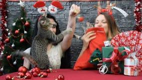 Mezcla de cuatro escenas, muchachas hermosas con gatos en alcohol del día de fiesta rodeados por la decoración del ` s del Año Nu almacen de video