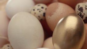 Mezcla de diversos huevos y la de oro en el primer avión metrajes
