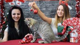 Mezcla de dos escenas, muchachas hermosas con gatos en alcohol del día de fiesta rodeados por la decoración del ` s del Año Nuevo almacen de video